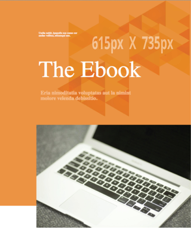 briefcase-orange-ebook.png